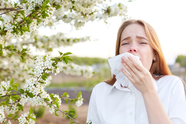 How getting an air purifier can help your allergies/asthma